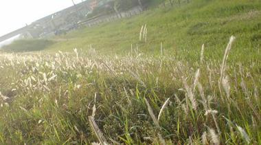 20080521064423.jpg