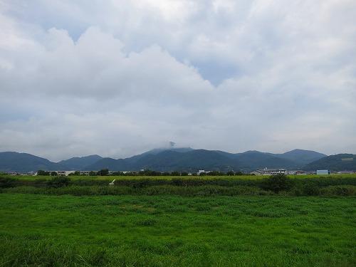 2014812IMG_0952.jpg