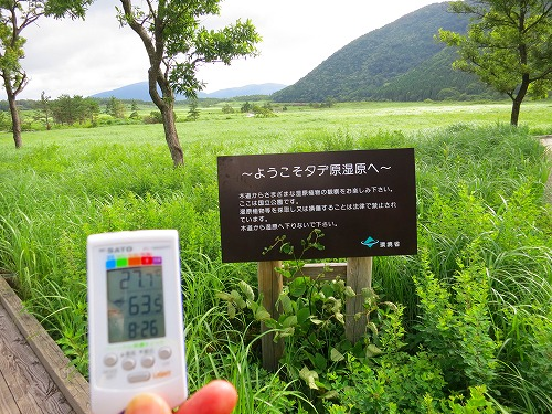 201484IMG_0689.jpg