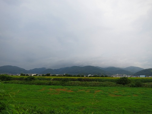 201485IMG_0910.jpg