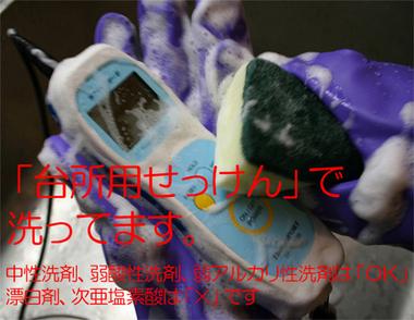 sani_v6_500.jpg